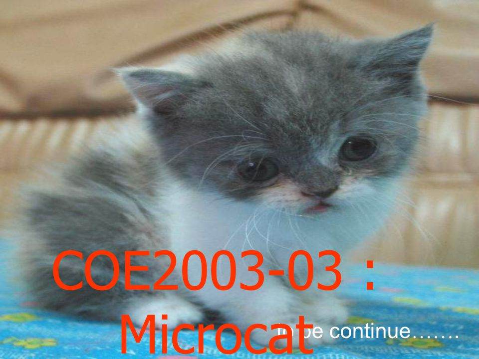 COE : Microcat to be continue…….