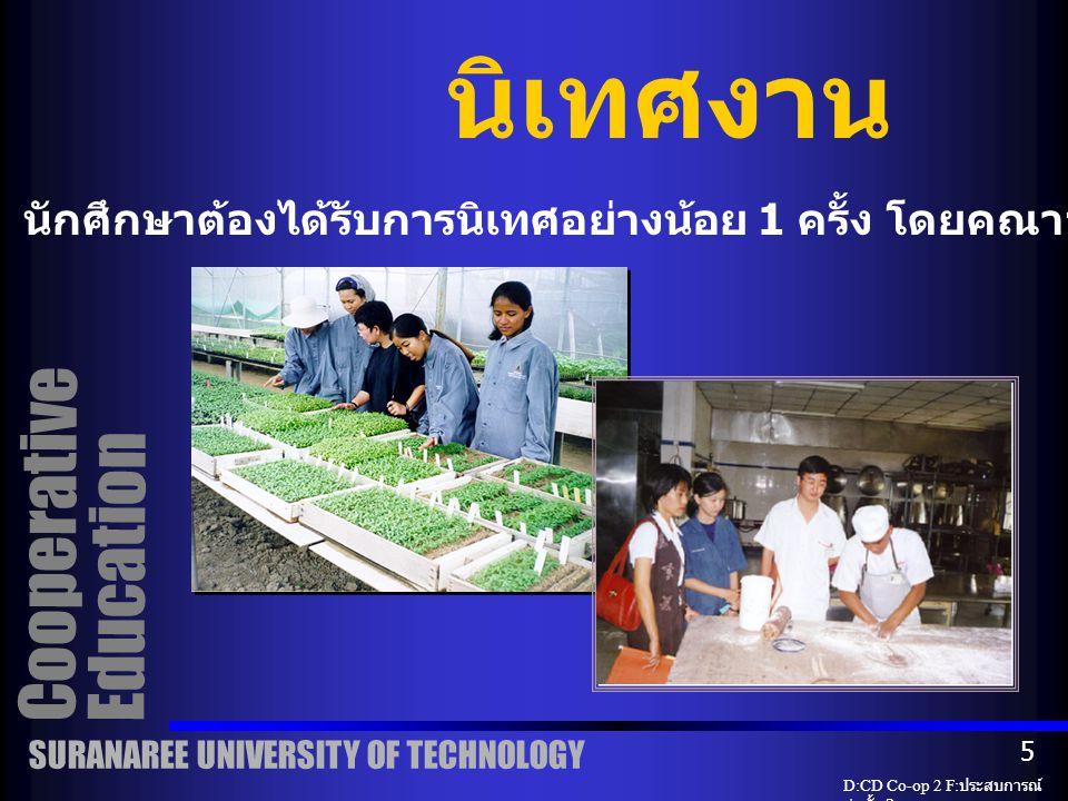 นิเทศงาน Cooperative Education