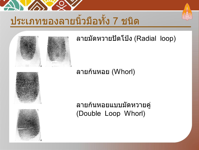 ประเภทของลายนิ้วมือทั้ง 7 ชนิด