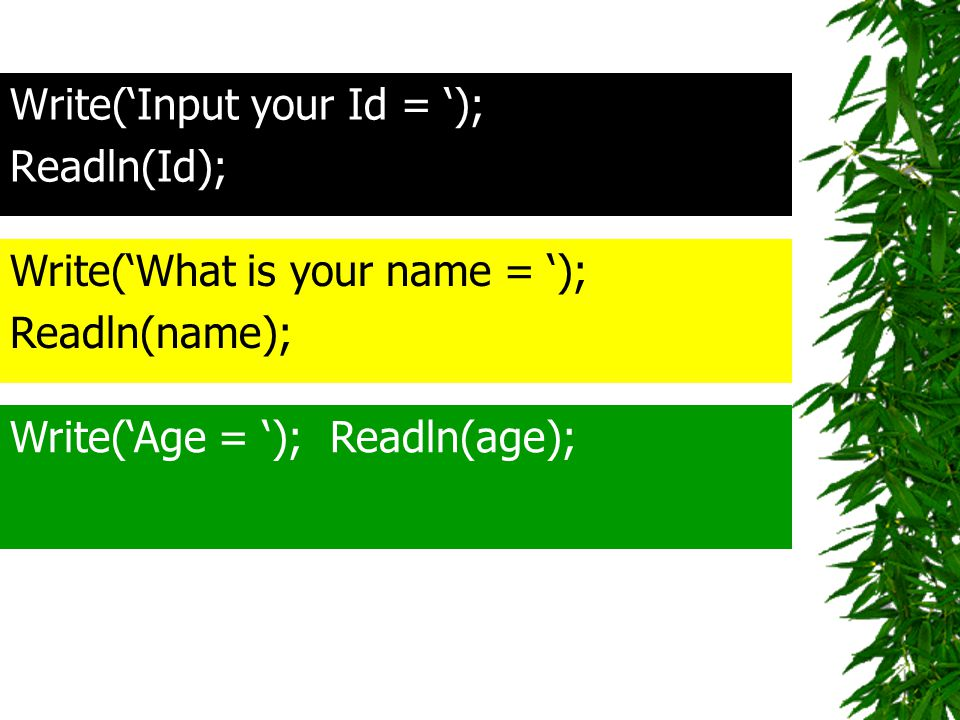Write('Input your Id = ');