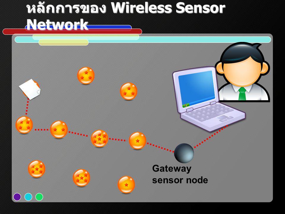 หลักการของ Wireless Sensor Network