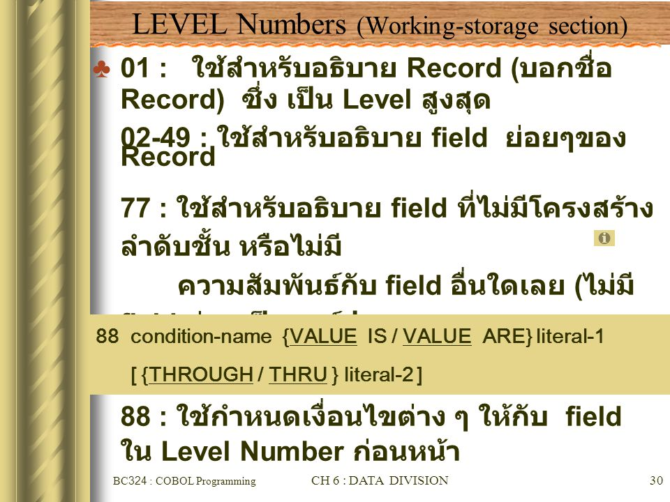 LEVEL Numbers (Working-storage section)