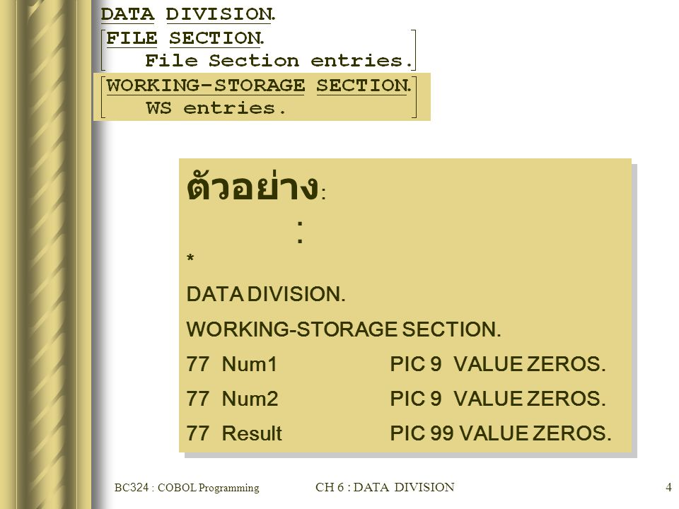ตัวอย่าง: . * DATA DIVISION. WORKING-STORAGE SECTION.