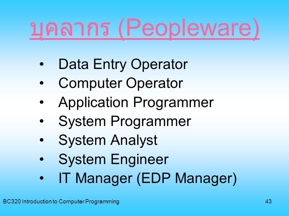 บุคลากร (Peopleware) Data Entry Operator Computer Operator