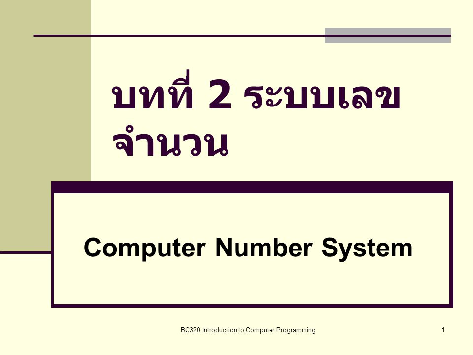Computer Number System