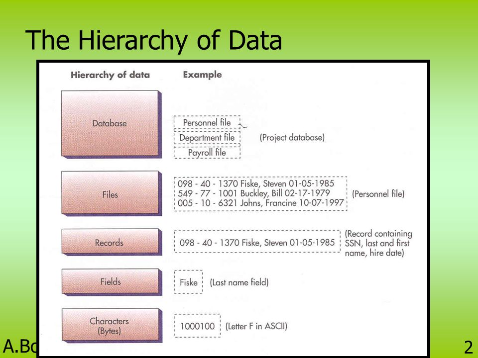 The Hierarchy of Data BC424 Information Technology