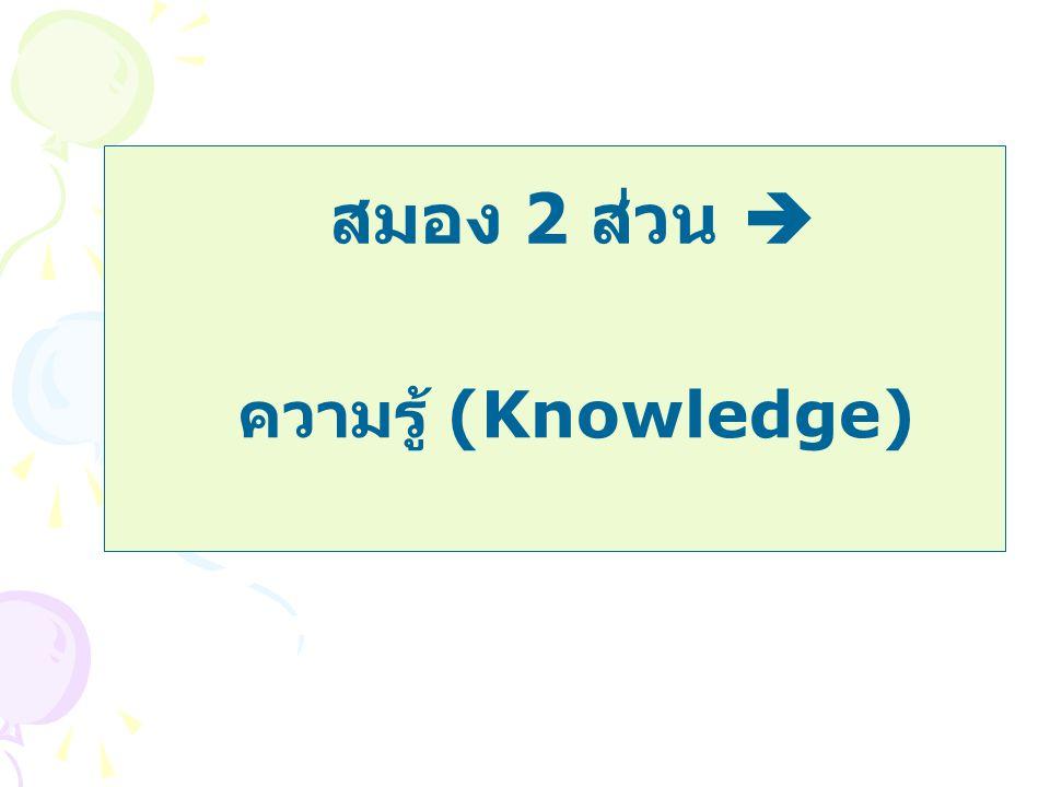 สมอง 2 ส่วน  ความรู้ (Knowledge)