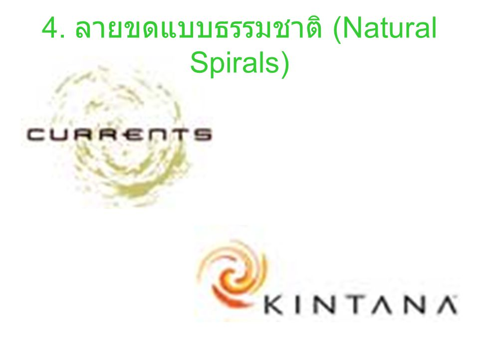 4. ลายขดแบบธรรมชาติ (Natural Spirals)