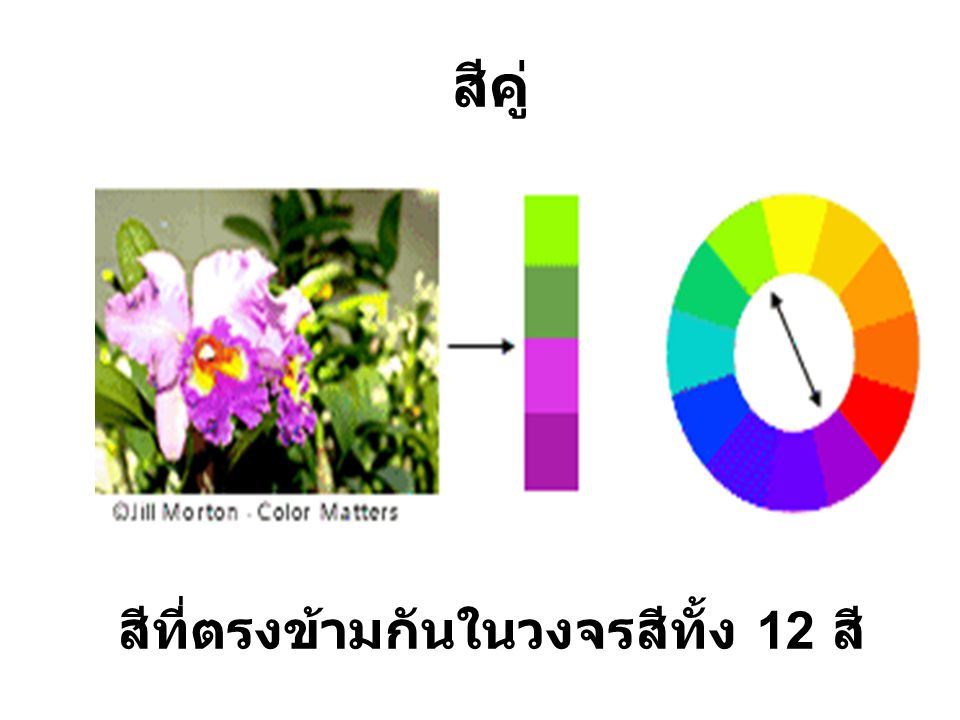 สีที่ตรงข้ามกันในวงจรสีทั้ง 12 สี