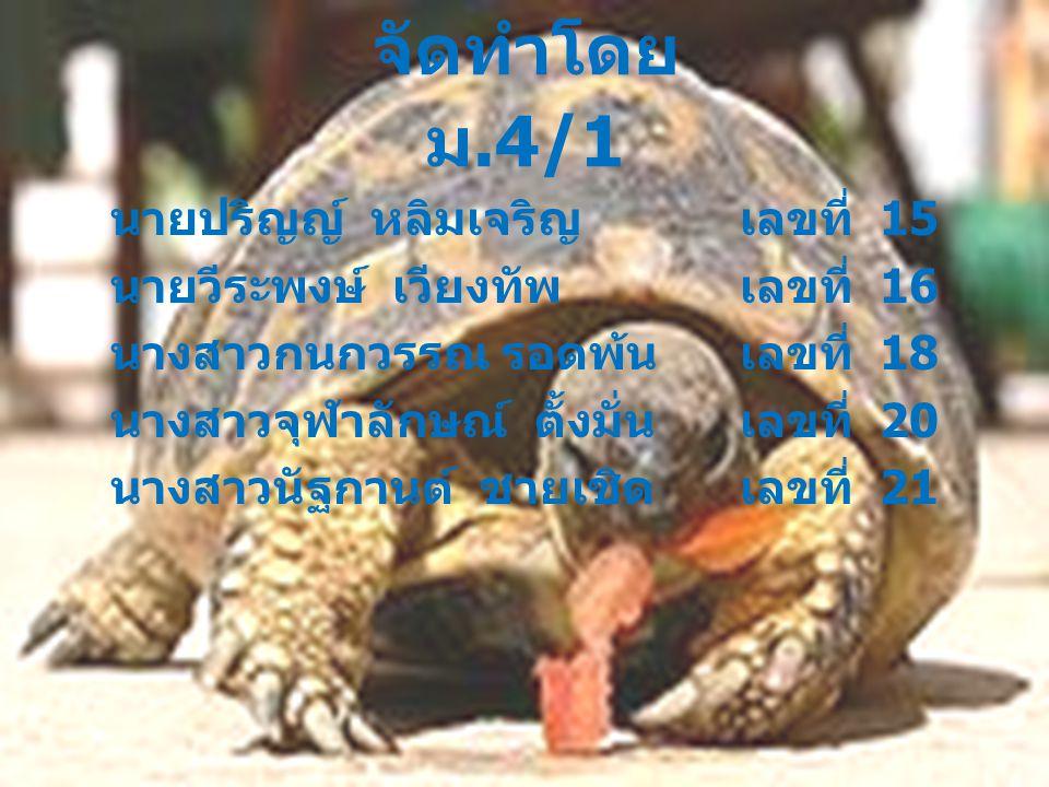 จัดทำโดย ม.4/1 นายปริญญ์ หลิมเจริญ เลขที่ 15