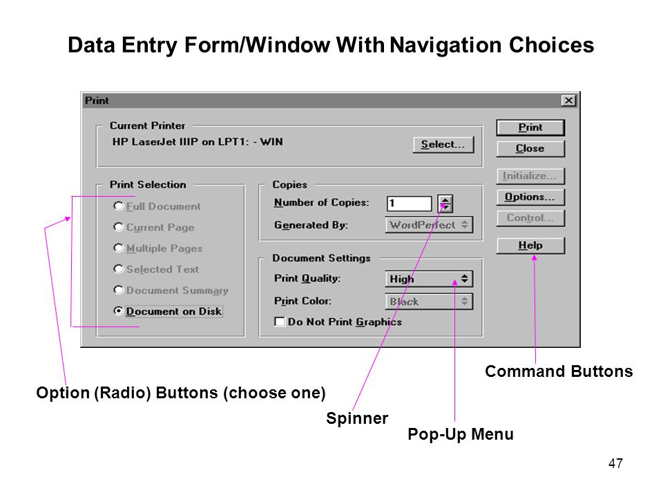 Data Entry Form/Window With Navigation Choices
