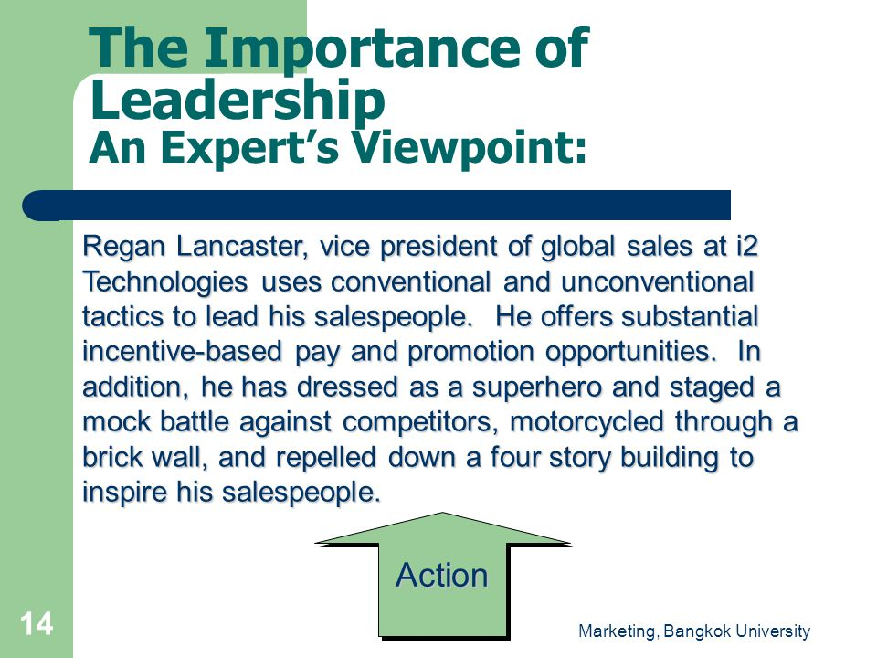 The Importance of Leadership An Expert's Viewpoint: