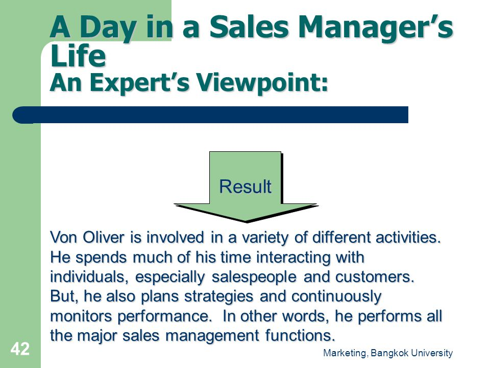 A Day in a Sales Manager's Life An Expert's Viewpoint: