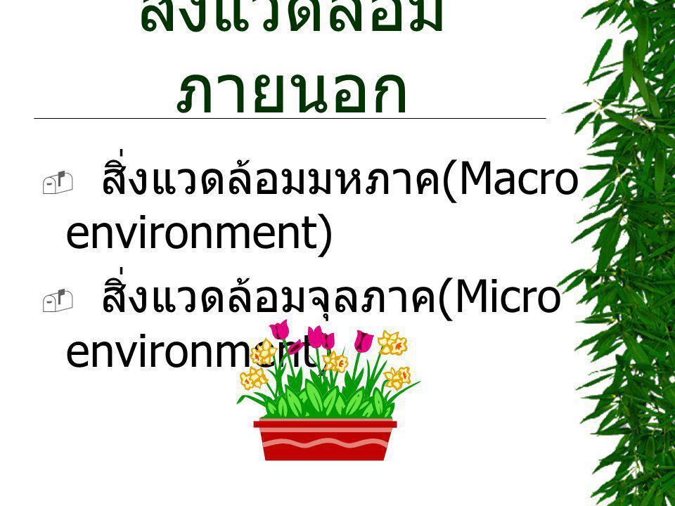สิ่งแวดล้อมภายนอก สิ่งแวดล้อมมหภาค(Macro environment)