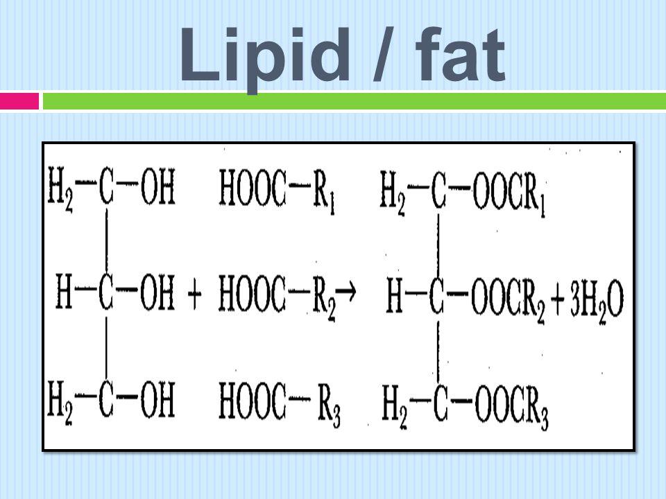 Lipid / fat
