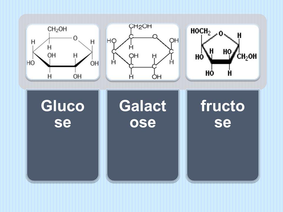 Glucose Galactose fructose