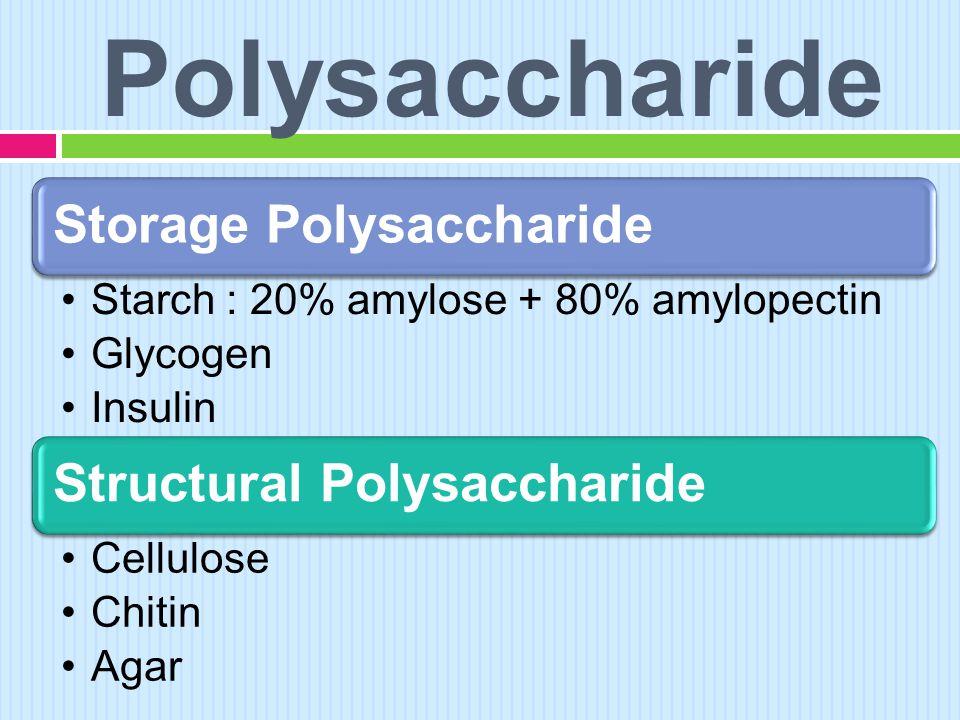 Polysaccharide Storage Polysaccharide Structural Polysaccharide