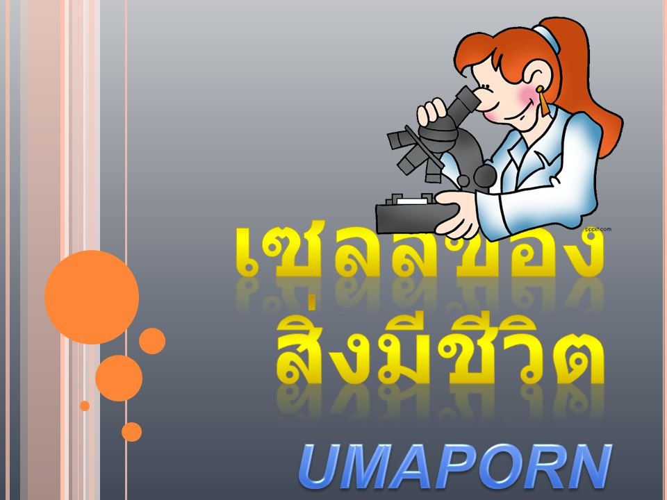 เซลล์ของสิ่งมีชีวิต UMAPORN