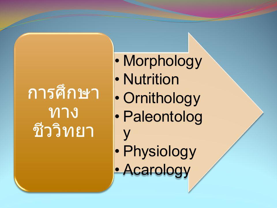 การศึกษาทางชีววิทยา Morphology Nutrition Ornithology Paleontology