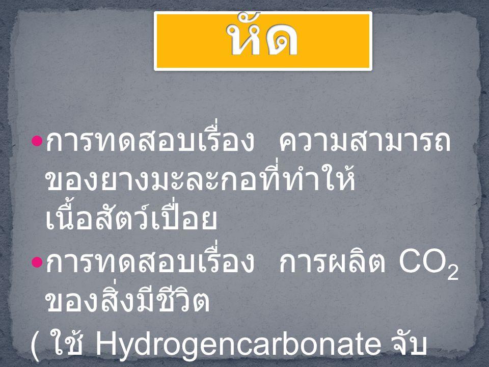 แบบฝึกหัด การทดสอบเรื่อง ความสามารถของยางมะละกอที่ ทำให้เนื้อสัตว์เปื่อย. การทดสอบเรื่อง การผลิต CO2 ของสิ่งมีชีวิต.