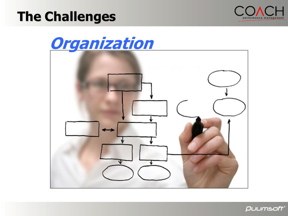 The Challenges Organization