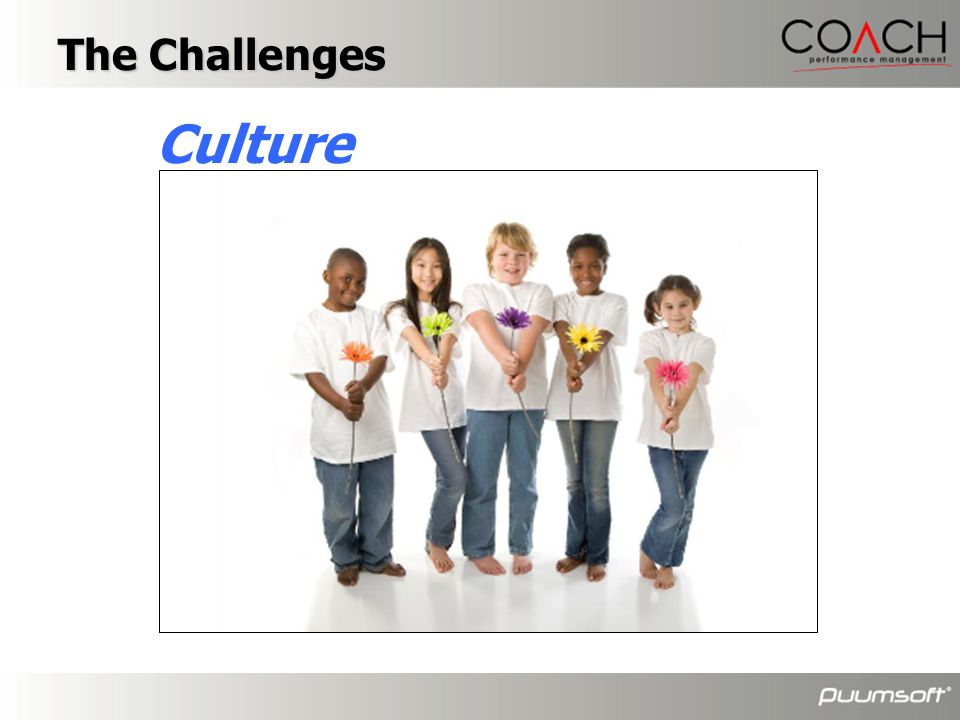 The Challenges Culture