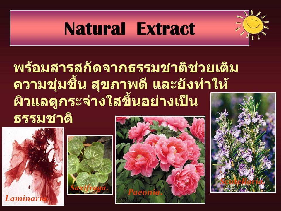 Natural Extract พร้อมสารสกัดจากธรรมชาติช่วยเติมความชุ่มชื้น สุขภาพดี และยังทำให้ผิวแลดูกระจ่างใสขึ้นอย่างเป็นธรรมชาติ