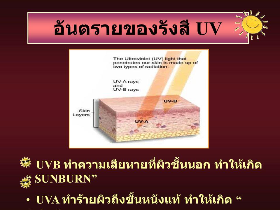 อันตรายของรังสี UV UVB ทำความเสียหายที่ผิวชั้นนอก ทำให้เกิด SUNBURN