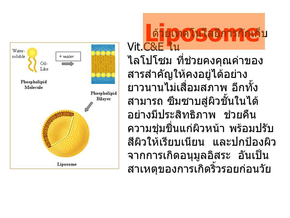 Liposome ด้วยเทคโนโลยีการกักเก็บ Vit.C&E ใน