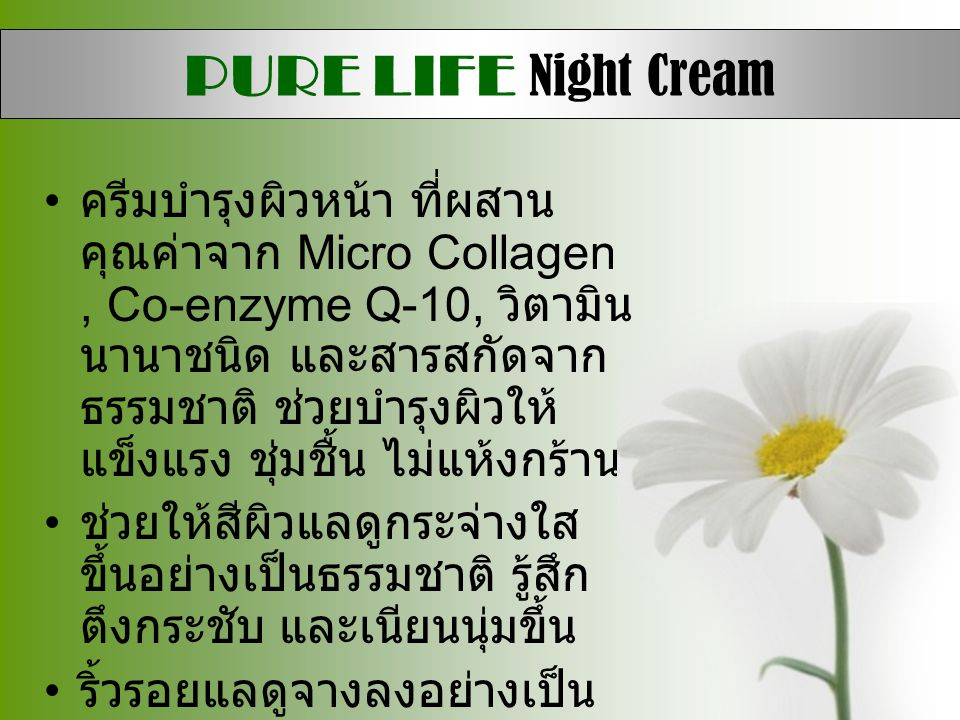 PURE LIFE Night Cream