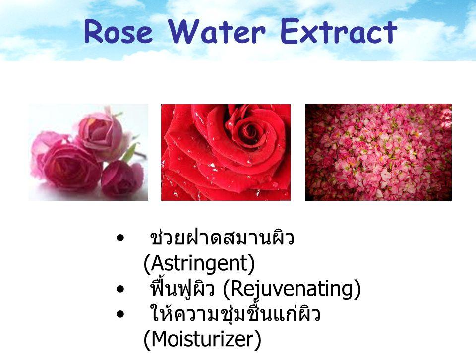 Rose Water Extract ช่วยฝาดสมานผิว (Astringent)