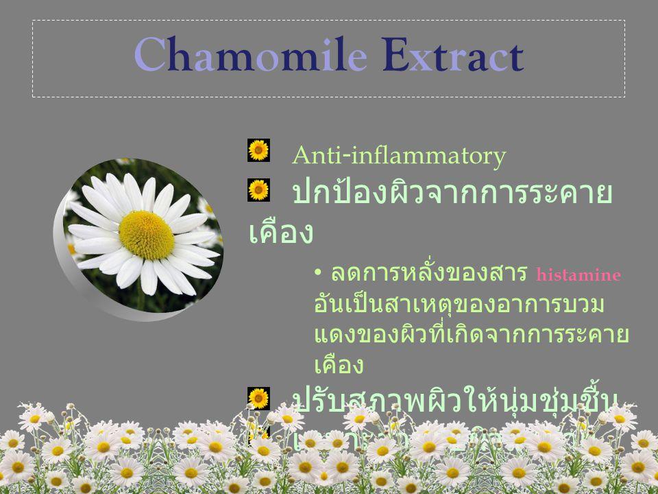Chamomile Extract Anti-inflammatory ปกป้องผิวจากการระคายเคือง