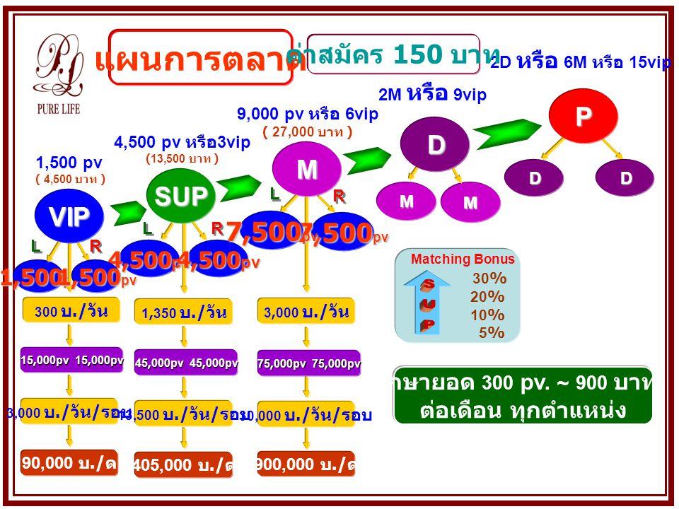 แผนการตลาด SUP ค่าสมัคร 150 บาท P D M SUP VIP 7,500pv 7,500pv 4,500pv