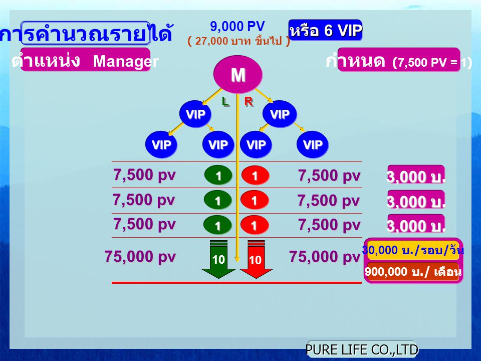 การคำนวณรายได้ ตำแหน่ง Manager กำหนด (7,500 PV = 1) M หรือ 6 VIP