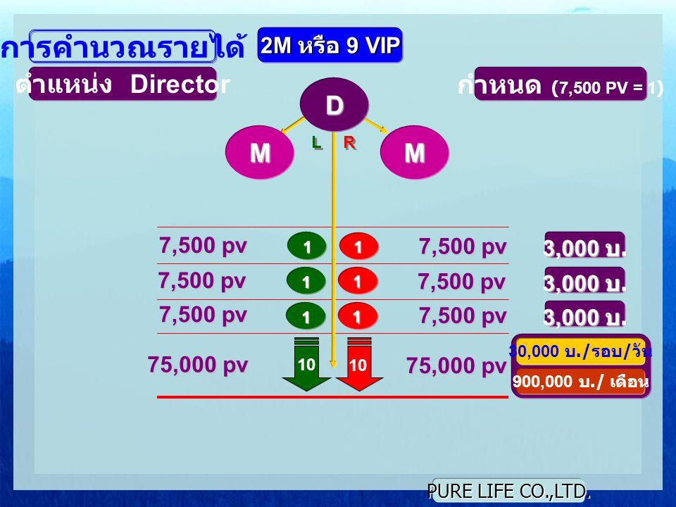 การคำนวณรายได้ ตำแหน่ง Director กำหนด (7,500 PV = 1) D M M