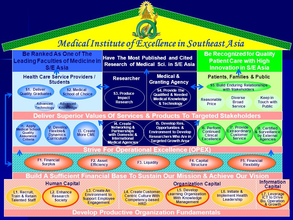 Medical Institute of Excellence in Southeast Asia