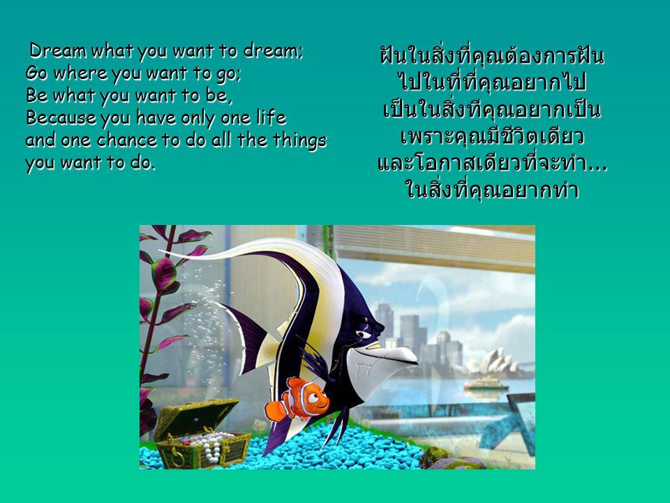 ฝันในสิ่งที่คุณต้องการฝัน ไปในที่ที่คุณอยากไป เป็นในสิ่งทีคุณอยากเป็น เพราะคุณมีชีวิตเดียว และโอกาสเดียวที่จะทำ... ในสิ่งที่คุณอยากทำ