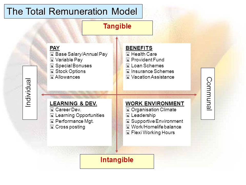 The Total Remuneration Model
