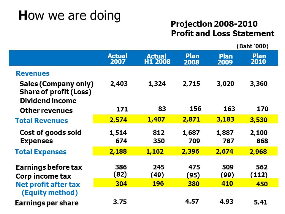 How we are doing Projection 2008-2010 Profit and Loss Statement