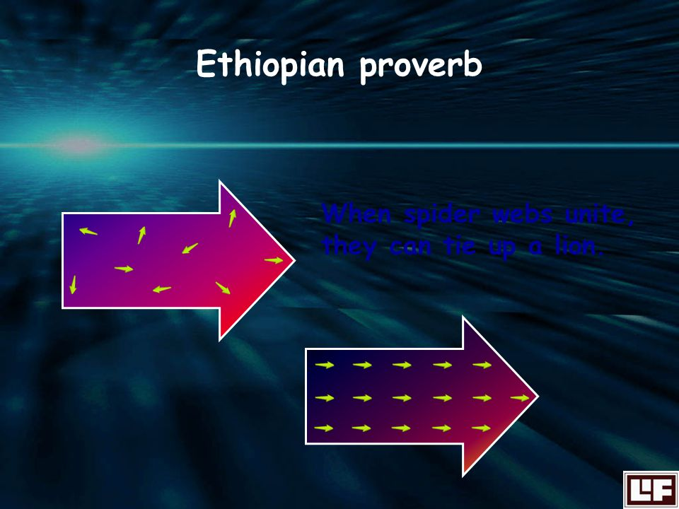 Ethiopian proverb When spider webs unite, they can tie up a lion.