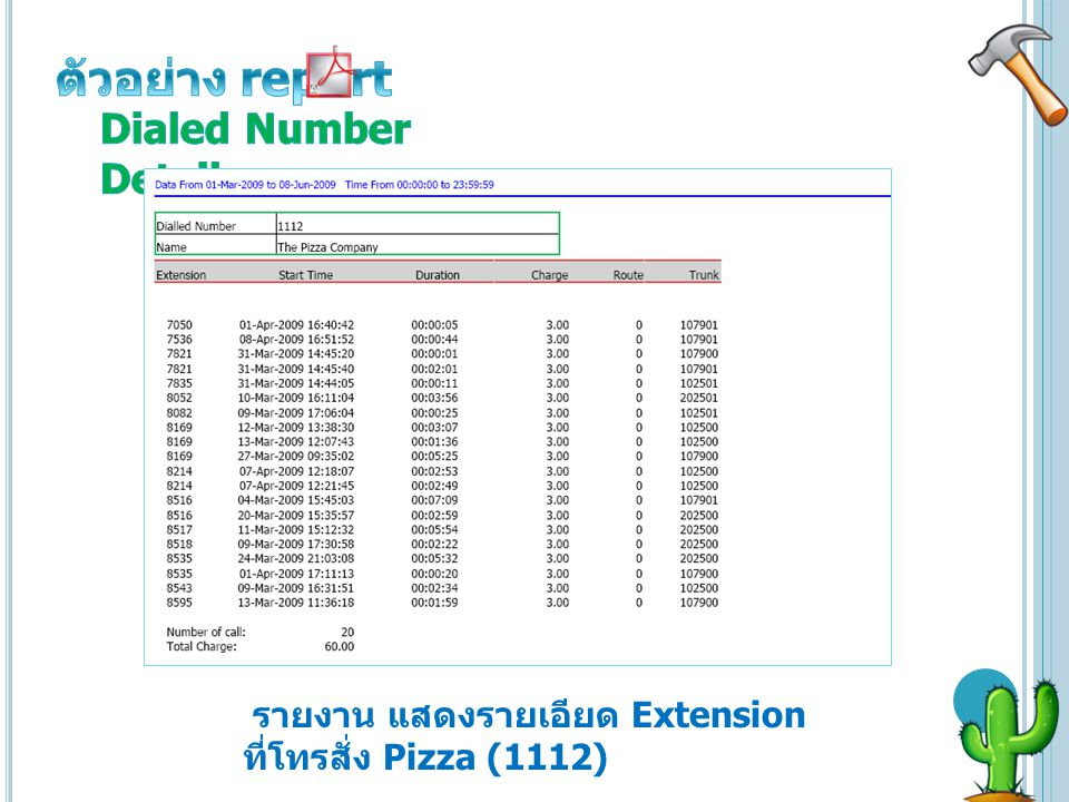 ตัวอย่าง report Dialed Number Details