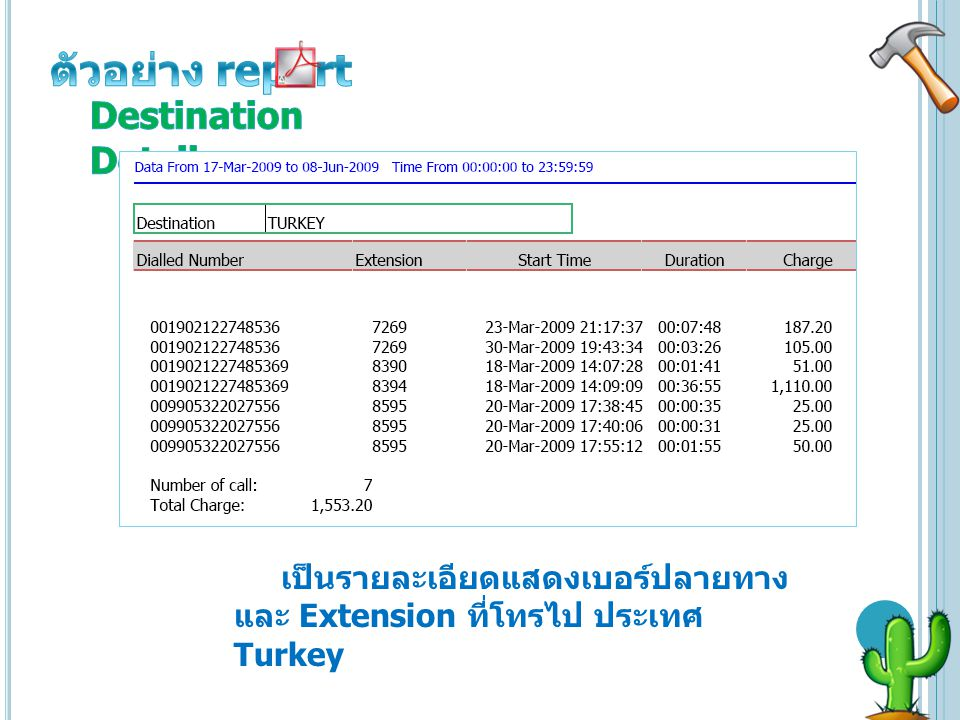 ตัวอย่าง report Destination Details