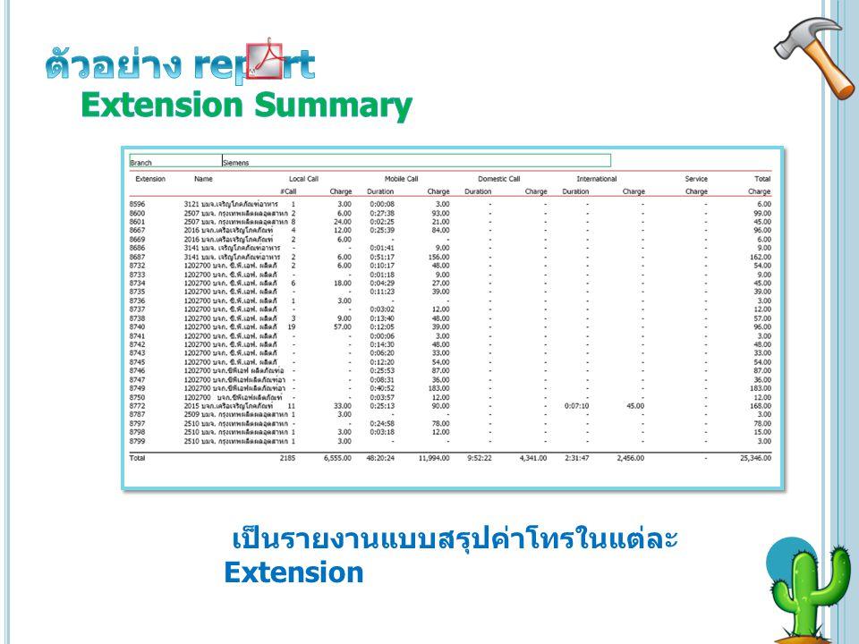 ตัวอย่าง report Extension Summary