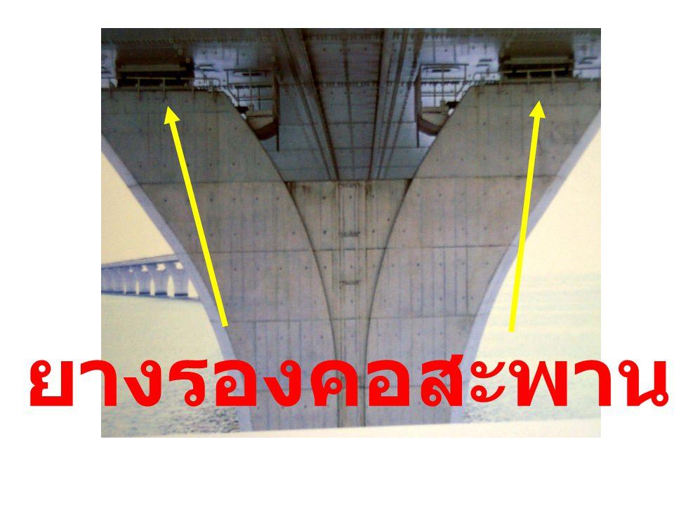 ยางรองคอสะพาน 12