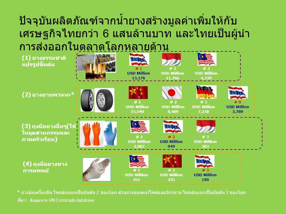 ปัจจุบันผลิตภัณฑ์จากน้ำยางสร้างมูลค่าเพิ่มให้กับเศรษฐกิจไทยกว่า 6 แสนล้านบาท และไทยเป็นผู้นำการส่งออกในตลาดโลกหลายด้าน