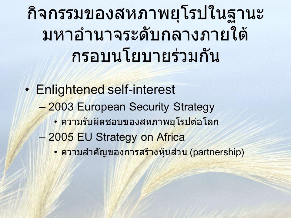 กิจกรรมของสหภาพยุโรปในฐานะมหาอำนาจระดับกลางภายใต้กรอบนโยบายร่วมกัน