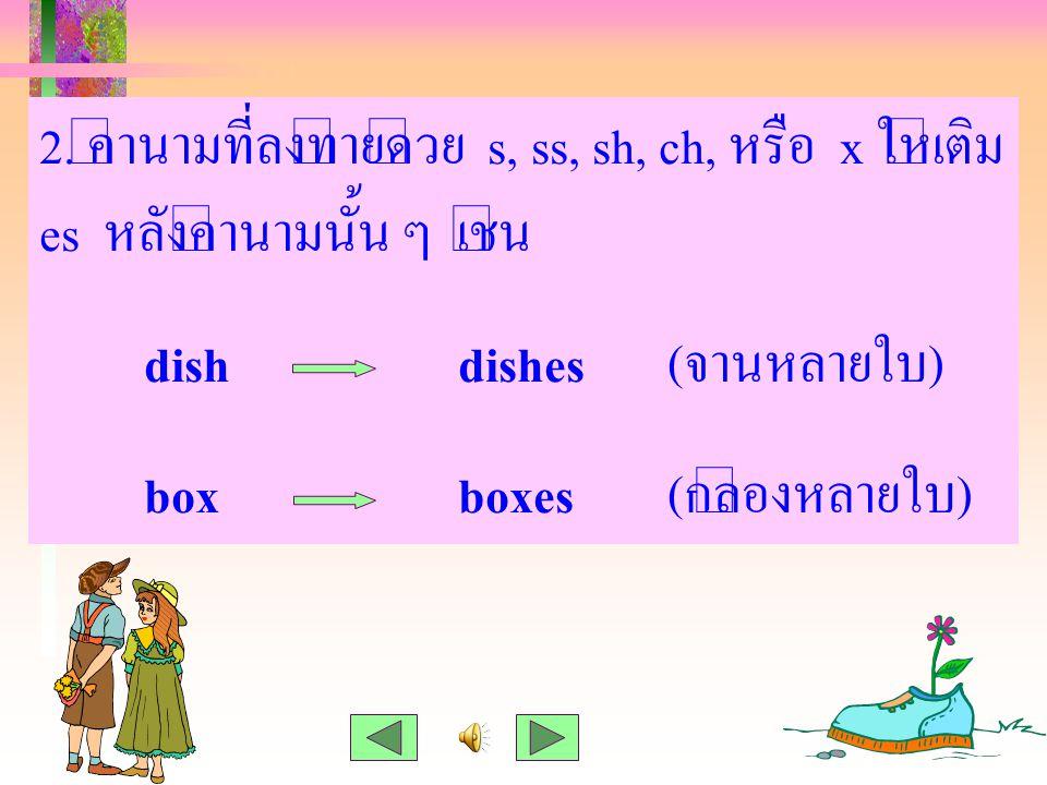 2. คำนามที่ลงท้ายด้วย s, ss, sh, ch, หรือ x ให้เติม es หลังคำนามนั้น ๆ เช่น