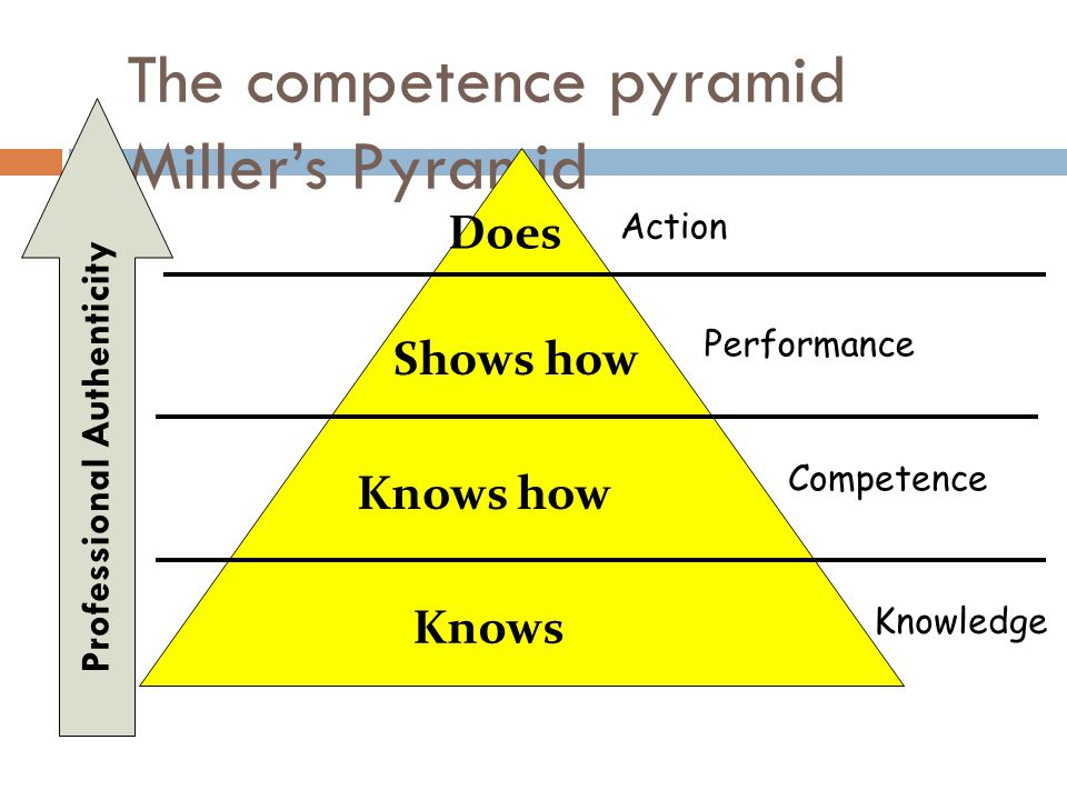The competence pyramid Miller's Pyramid