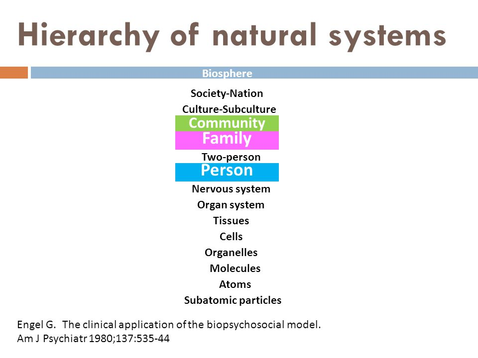Hierarchy of natural systems