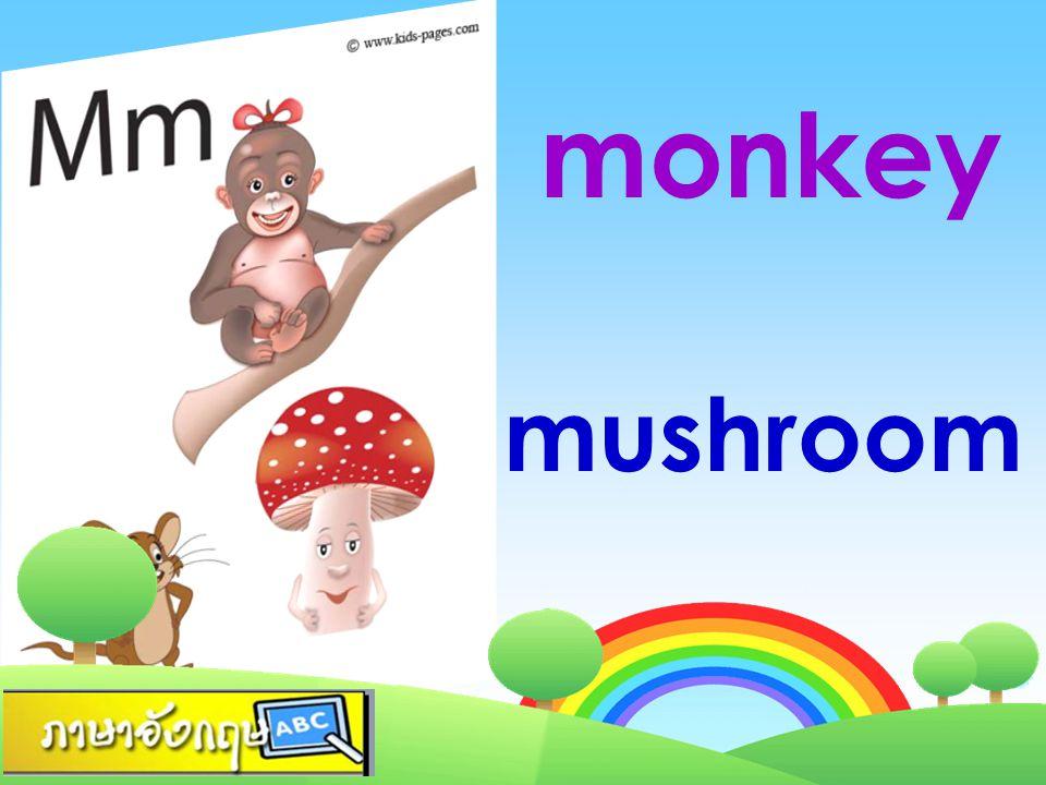 monkey mushroom